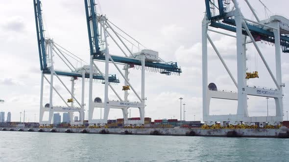 Thumbnail for Cranes for containers in the port