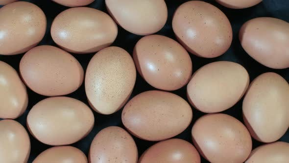 Thumbnail for Brown Eggs Rotational Background