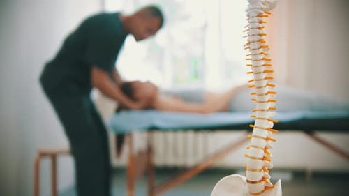 Woman Having an Osteopathic Treatment - a Plastic Sample of Human Spine on the Foreground