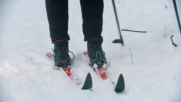 Thumbnail for Skiing in the Snowy Woods - Putting Boots on the Ski