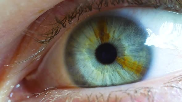Thumbnail for Eye Lid Opening To Reveal Pupil And Iris