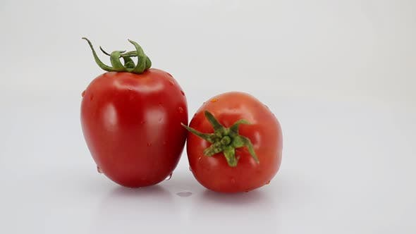 Thumbnail for Tomato Rotation Loop