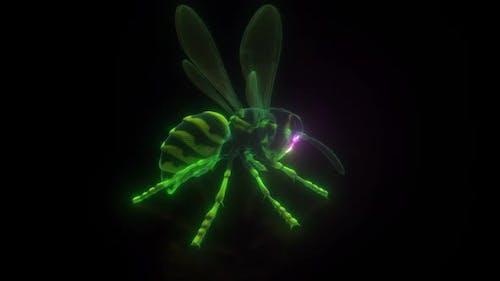 Wasp Or Hornet Digital Hud Hologram Hd