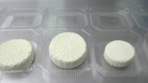 Wheels of Traditional Cottage Cheese