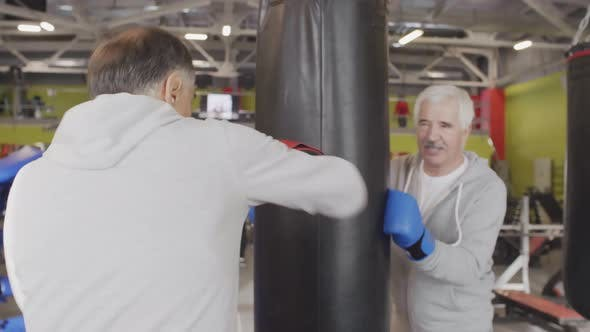 Thumbnail for Two Aged Boxers Having Training in Gym