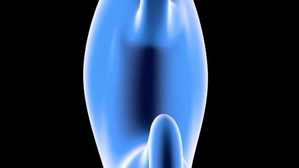 Anatomy visualisation of a human stomach