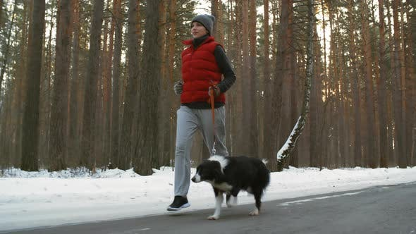 Thumbnail for Woman Running with Border Collie in Woods