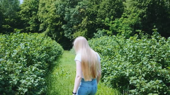Thumbnail for Back View of Blonde Young Woman Walking in Natural Park