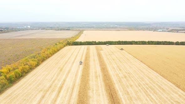 Luftaufnahme von Ackerland während des Ernteprozesses. Blick von hoch auf landwirtschaftliche Maschinen