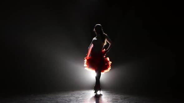 Thumbnail for Beautiful Girl Dancing Rumba in the Studio on a Dark Background, Smoke, Silhouette
