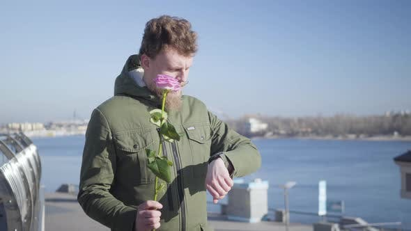 Thumbnail for Portrait of Young Caucasian Redhead Man with Mustache and Beard Waiting for Sweetheart Holding Rose