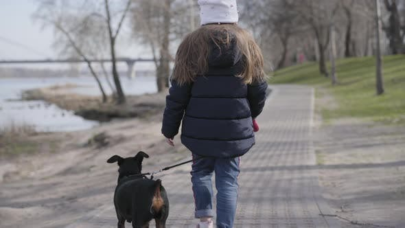 Back View of Little Brunette Girl Walking with Dog in Park. Charming Child Strolling with Pet Along
