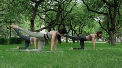 Fitness Women Practicing in Park