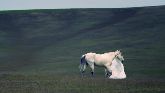 White Horse Is Walking on the Grass Covered Hills with an Angel, Fantasy Scene