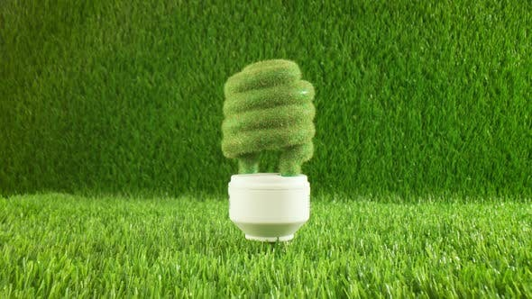 Thumbnail for Eco Light Bulb in Green Grass