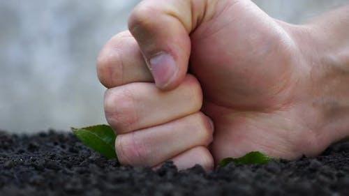 Kampf gegen die Gartenarbeit. Zerstörung des Ökosystems.