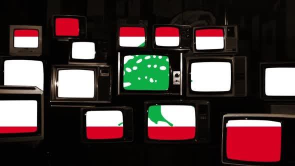 Flag of Lebanon on Vintage TVs.