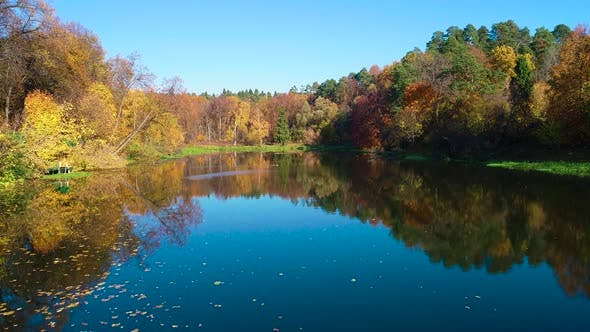 Colorful Autumn Forest Wood on the Lake