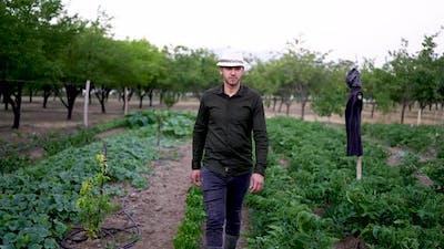 Farmer Walking In Field