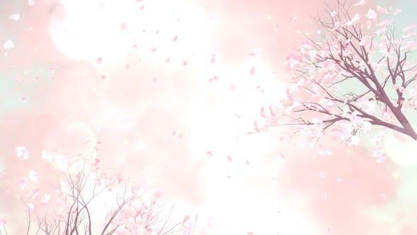 Thumbnail for Plum Blossom
