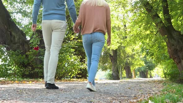 Thumbnail for A Couple Strolls Down a Pathway Through a Park on a Sunny Day - View From Behind