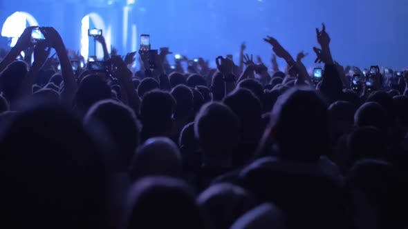 Crowd of Dancing Music Fans at the Concert
