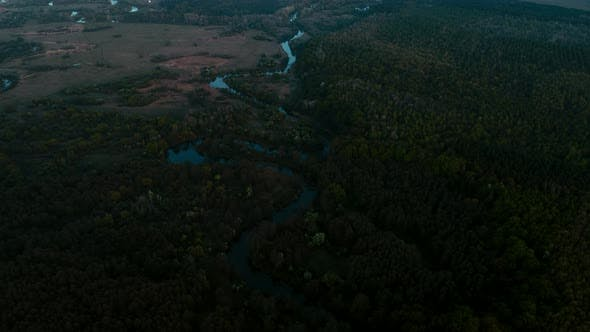 Spring Forest and River on Sunset
