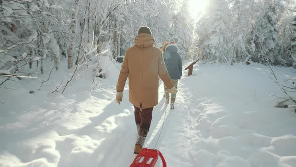 Thumbnail for Friends Walking with Sled through Forest