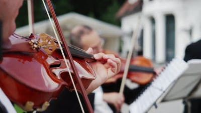 Musical Quartet Three Violinist Playing Outdoor