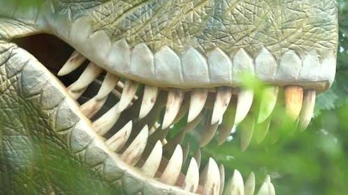 Prehistoric Carnivour Dinosaur Tyrannosaurus Rex, Archaeology and Paleontology