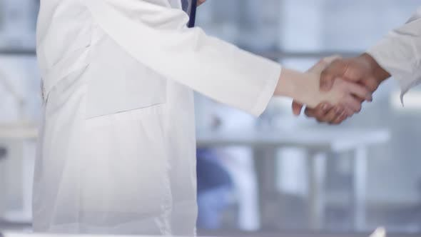 Thumbnail for Male and Female Doctors Shaking Hands