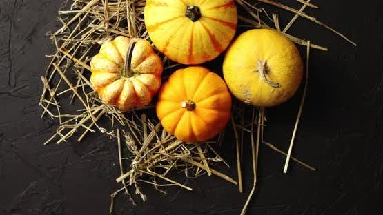 Yellow Pumpkins Laid on Hay