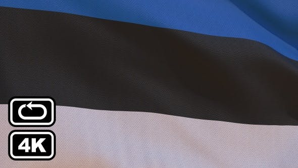 Thumbnail for Estonia Flag 4K Seamless Loop