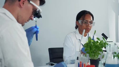 Black Female Microbiologist in Safety Glasses Looking at Plant Leaf Under the Microscope