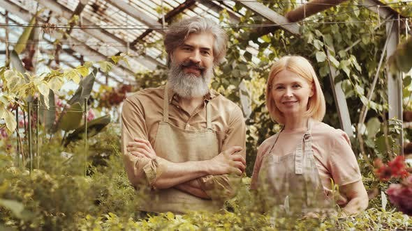 Thumbnail for Portrait of Cheerful Senior Male and Female Farmers in Greenhouse