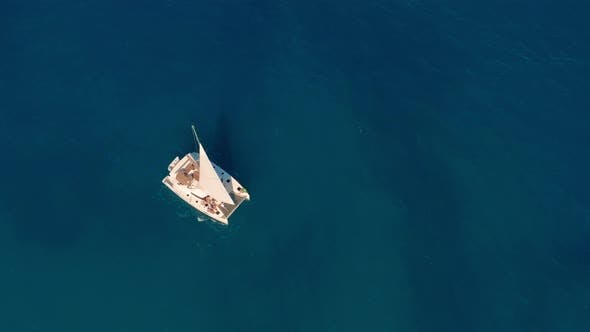 Cover Image for Catamaran Sailing on the Sea. Aerial Shoot of the Catamaran Sailing in the Wind.