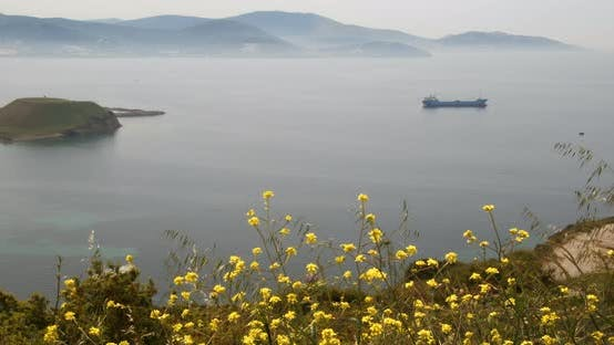 Thumbnail for Sea Landscape With Bright Yellow Spring Flowers And The Ship In The Distance