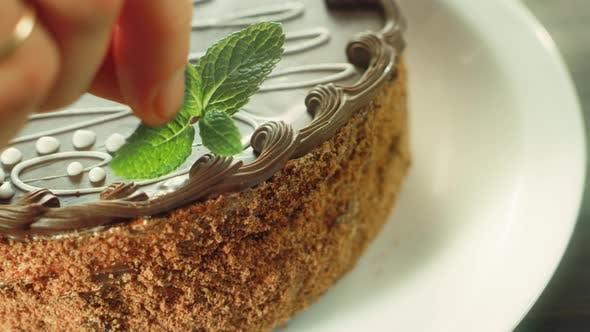 Thumbnail for Closeup Woman Hand Decorating Cake with Fresh Mint. Confectioner Decorating Cake