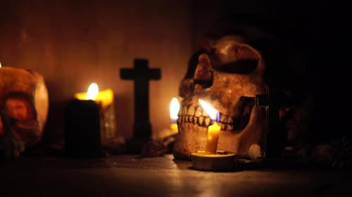 halloween concept with the human skull pumpkin and candle light dark horror