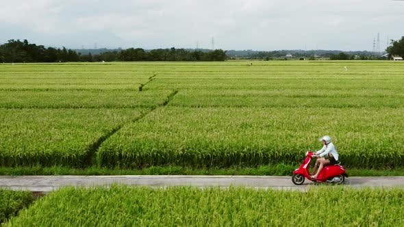 Thumbnail for A Young Man Riding a Chopper on a Countryside Road. Beautiful Mountain Road. Travel on Motorbike