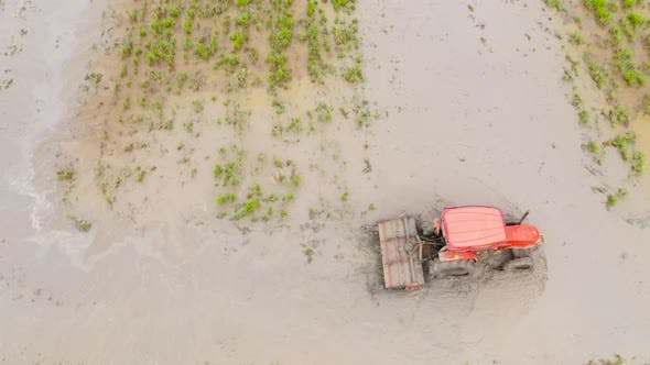 Thumbnail for Ein Landwirt benutzt einen Traktor, um den Boden für den Reisanbau vorzubereiten