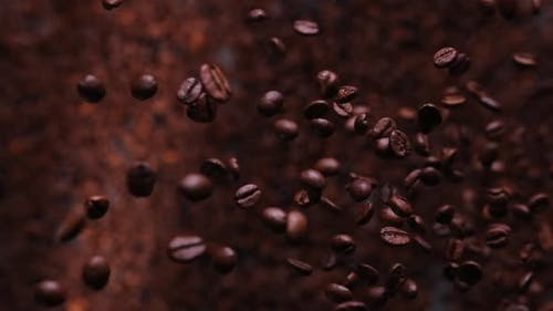 fresh roasted coffee beans fly super slow
