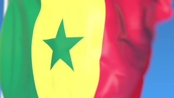 Thumbnail for Waving National Flag of Senegal