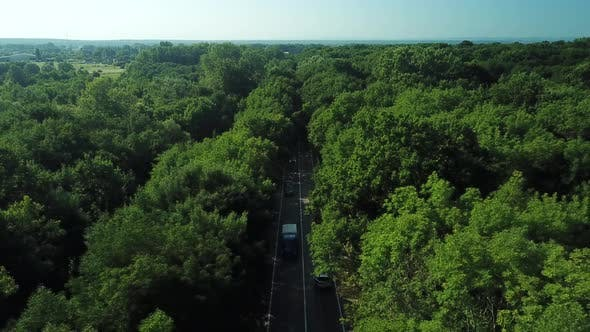 Thumbnail for Drone Point of View - Flying Over a Country Road That Lies Between a Densely Populated Forest