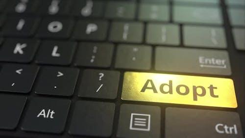 Black Computer Keyboard and Gold Adopt Key