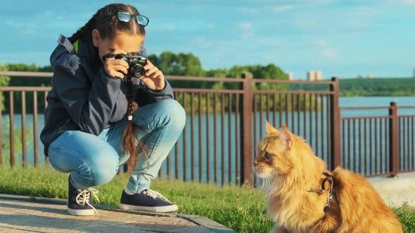Thumbnail for Girl Photographer Taking a Picture of His Pet, a Beautiful Cat.