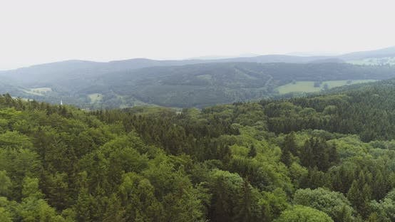 Thumbnail for Aerial View of Forest
