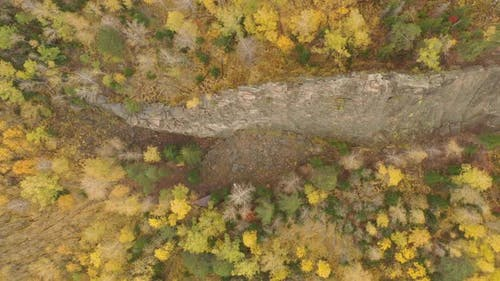Granite Rocks in the Autumn Forest, Top View.