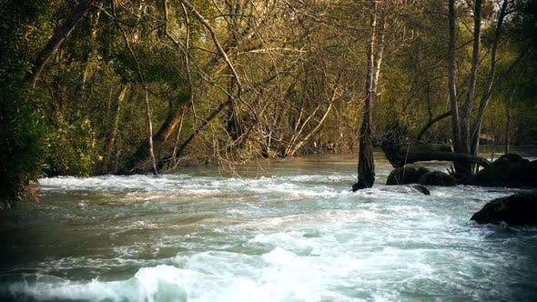 Cinematic River