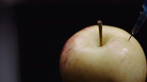 Food Genetic Modification - Syringe Injecting Liquid in Apple